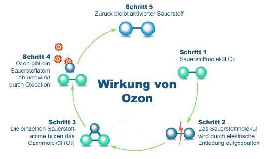 ozonwirkung